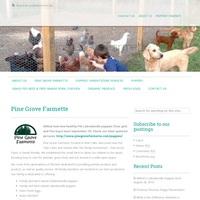 Pine Grove Farmette