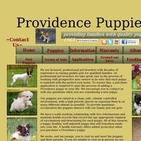 Providence Puppies