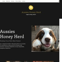 Aussies honey herd