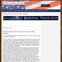Hillbilly Boston Terriers in WV