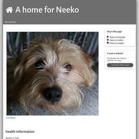 A Home for Neeko