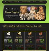 Emery n Denises Golden Puppies