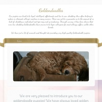 Image of website Family raised and LOVED Goldendoodle and Poodle